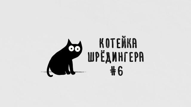 Котейка Шрёдингера - Выпуск №6