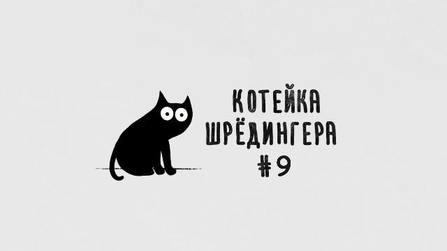 Котейка Шрёдингера - Выпуск №9
