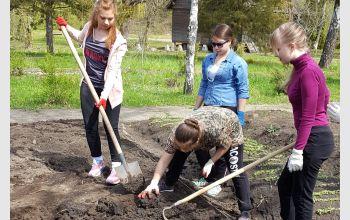 Студенты МГТУ посадили аптекарский огород